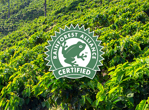 rain-forest-alliance-certified-1850-coffee-F